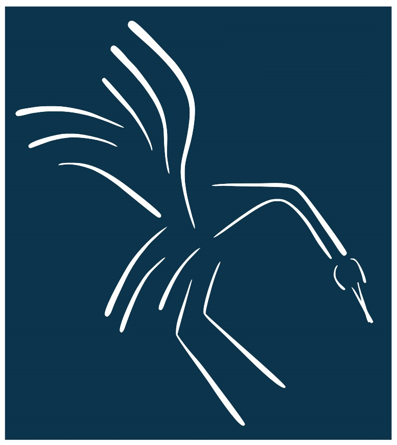 simple line drawing of a bird with extended wings against blue background
